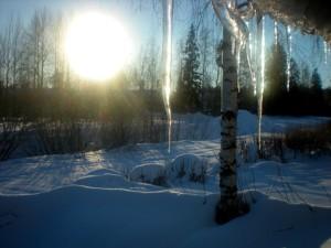 8 Winter Wonders